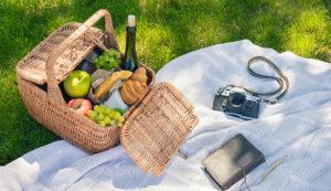 10 mejores cestas de picnic en 2020